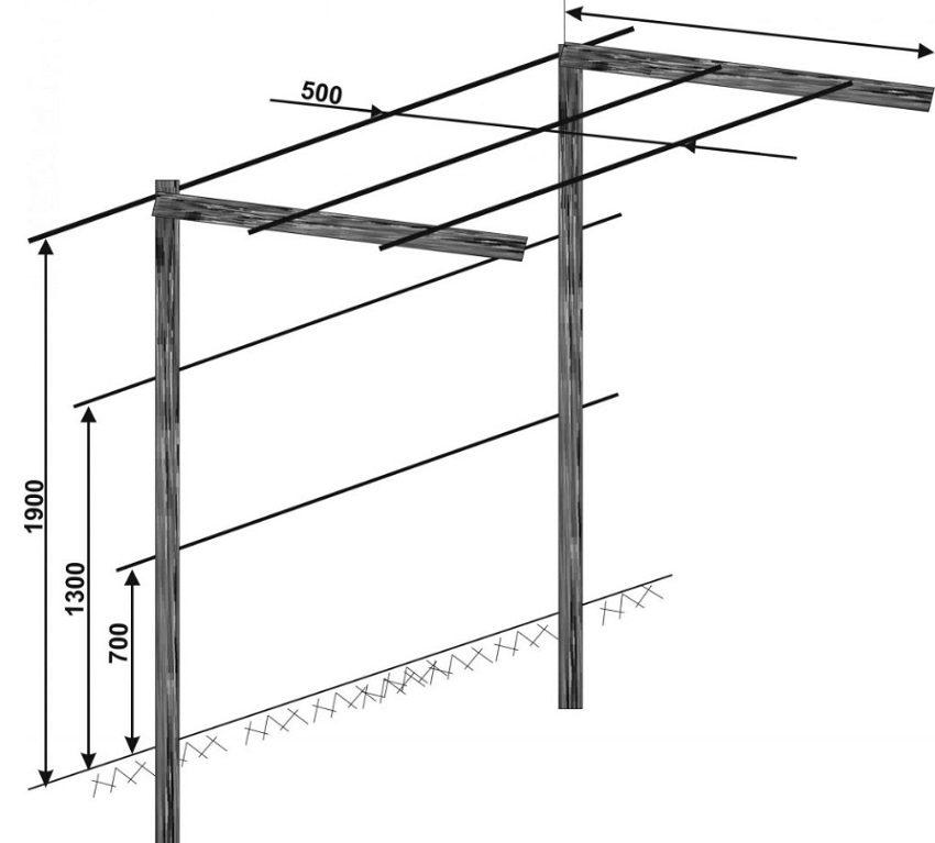 размер и конструкция Г-образной перголы
